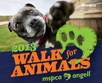 2013-walk-for-animals-bruno (1)